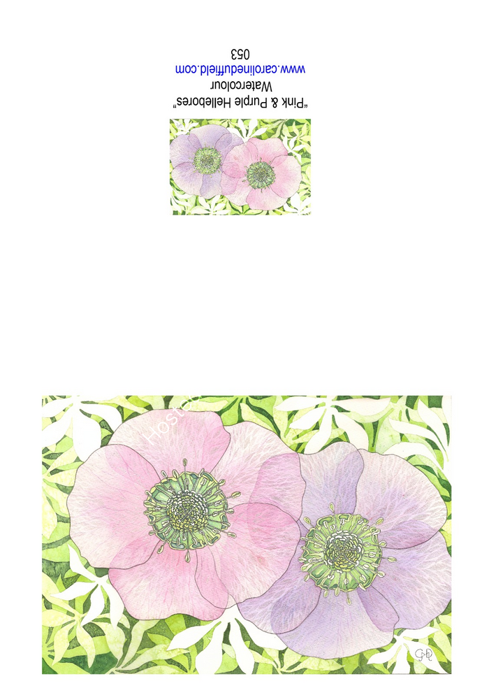 Pink & Purple Hellebores A6 Card