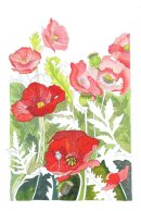 POPPIES 2 (SOLD)