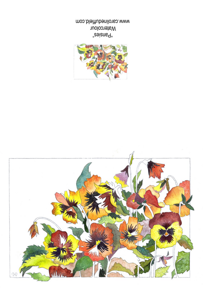 Pansies A6 Card