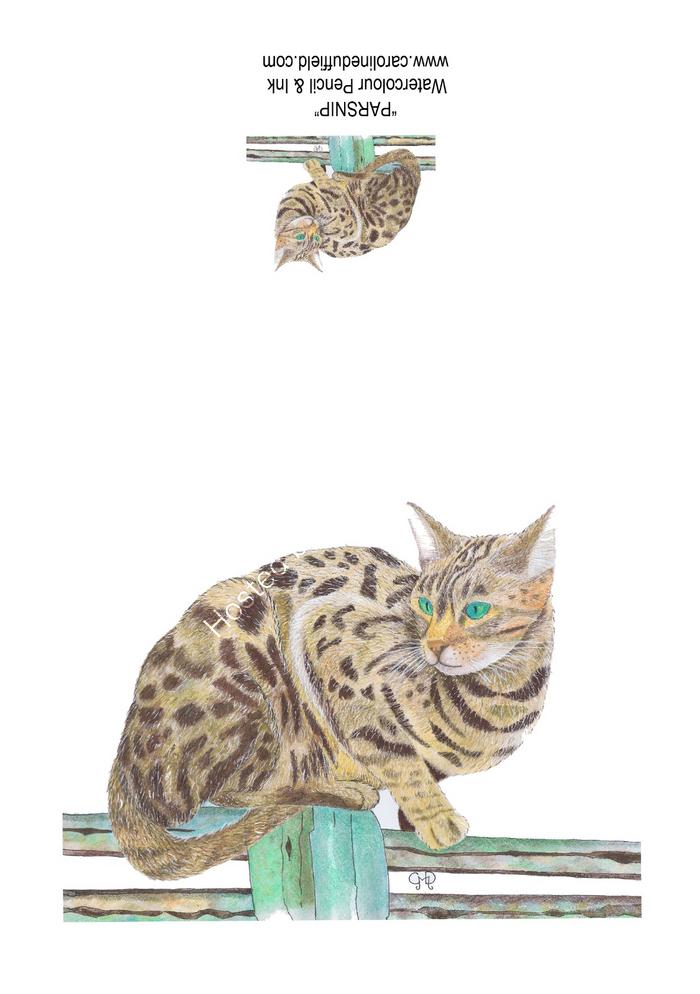 Parsnip the Cat A6 Card