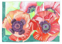 Poppies No. 1 A6 Card