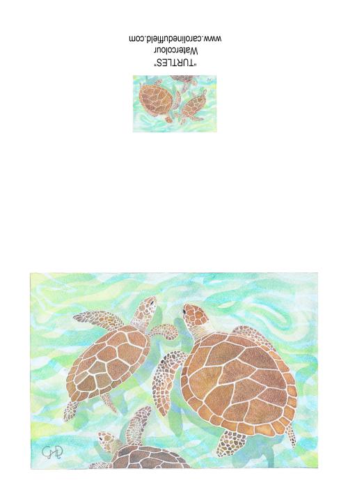 Turtles A6 Card