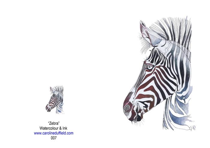 Zebra A6 Card