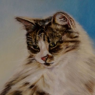 Tabby & White Cat 'Mitzi'
