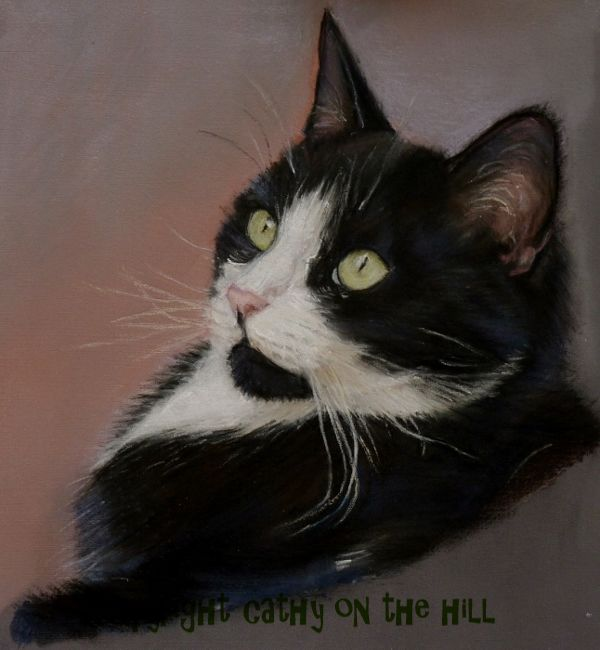 Black & White Cat 'Suki'