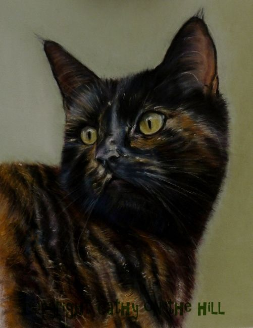 Tortoiseshell Cat 'Brindle'