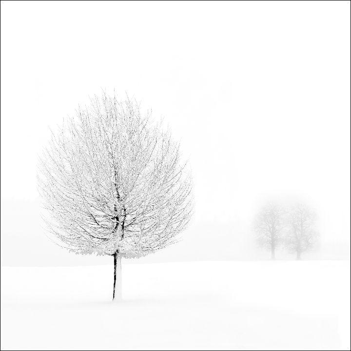 Snowscene 1