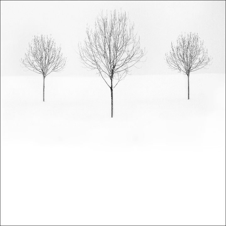 Snowscene 2