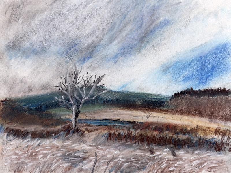 White Tree, Patieshill