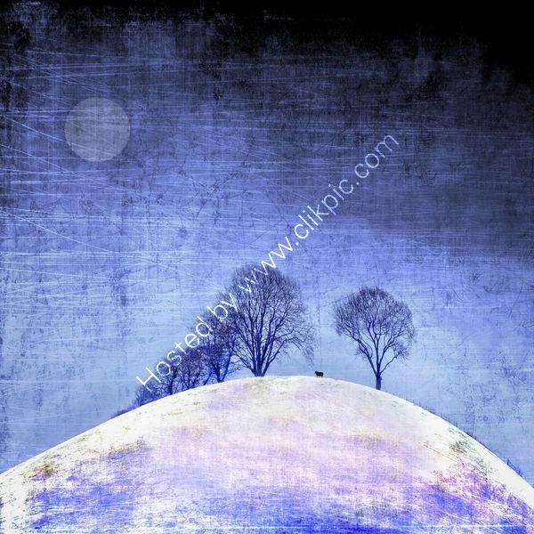 A Cold Winter Night