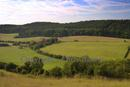 View of South Warren Farm from Pewley Downs