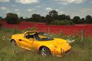 Yellow Sports car with red poppy background