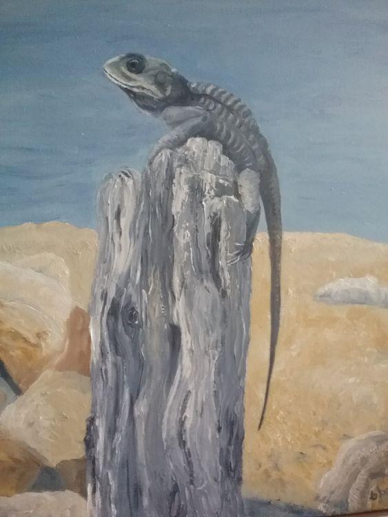 Cyprus Lizard £60
