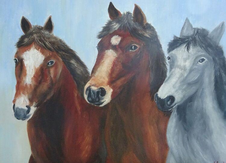 3 Wild Horses  £55