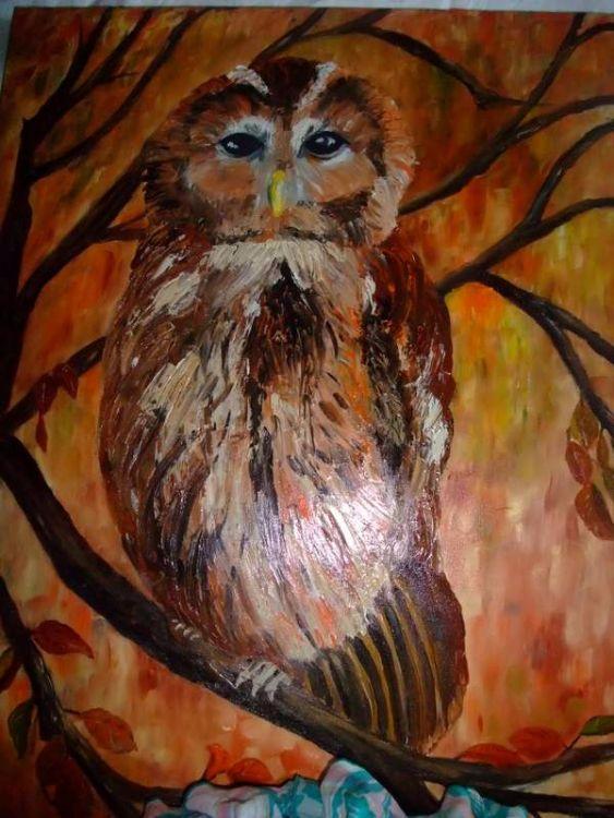 Tawney Owl  £65