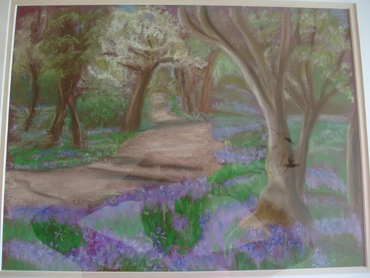 Bluebell Woods £50