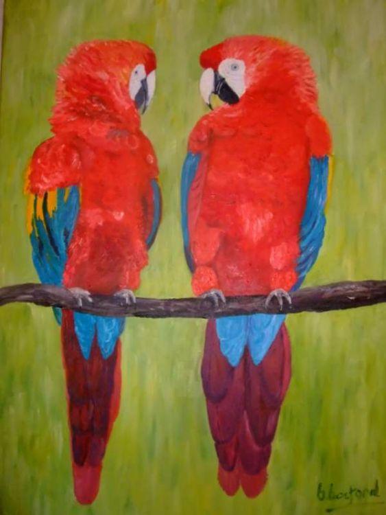Love Birds £60