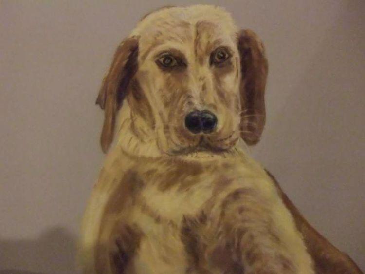 Pup NFS
