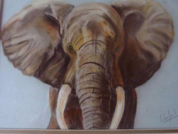 Elephant  £35 sold