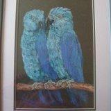 Blue parrots NFS