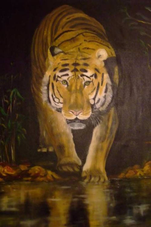 Tiger prowling £130