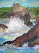 swell in Hope Cove 2