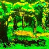 Teddy Bear's Picnic Wood