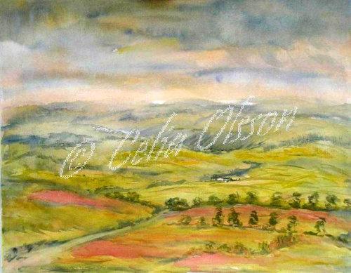 Rolling Devon hills