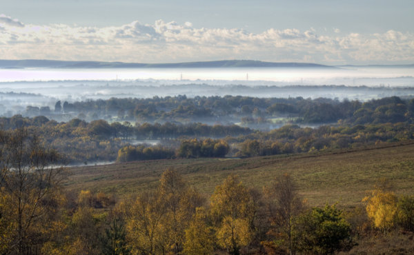 Autumn's Glorious Mists