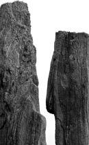 Stone Giants Talk