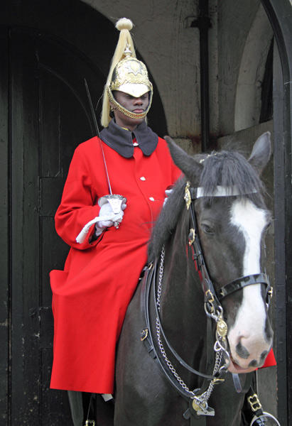 Horse Guard in command