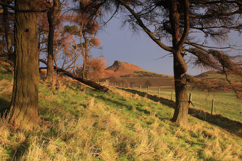 Early Morning at Roseberry Topping