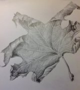 Pencil leaf - finished