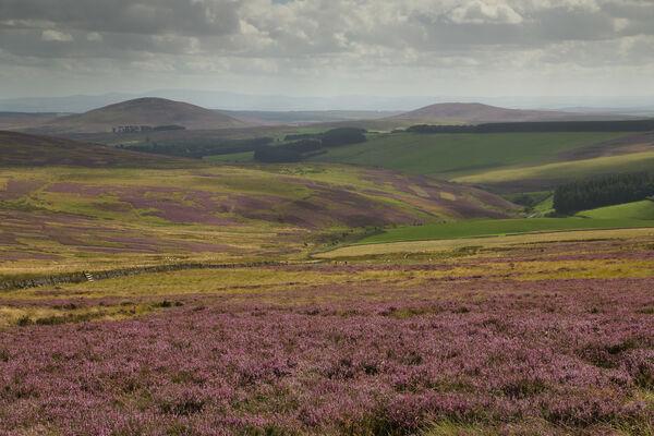 September 2020 - Lammermuir Hills, Scottish Borders