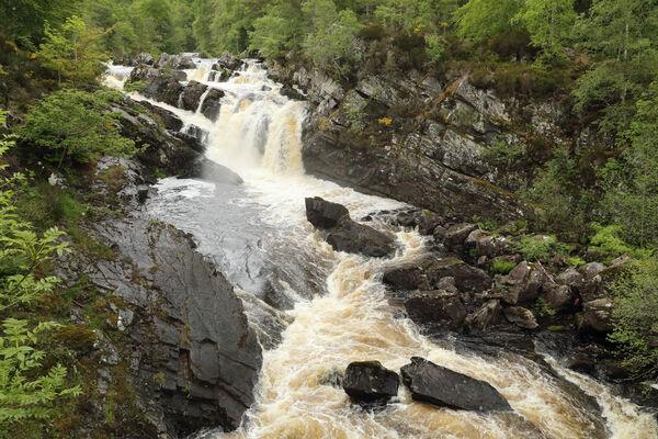 July 2019 - Rogie falls, near Contin