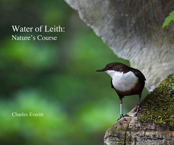 Water of Leith: Nature's Course
