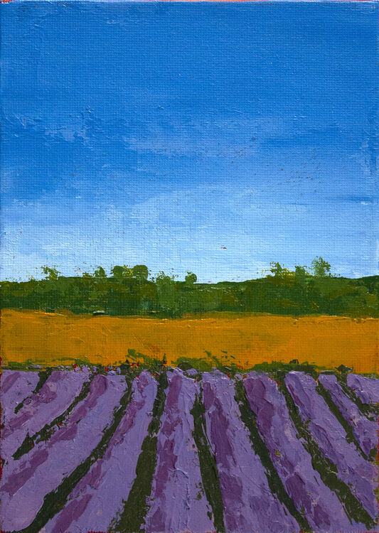 Remembered Walk XX: Lavender Farm, Norfolk