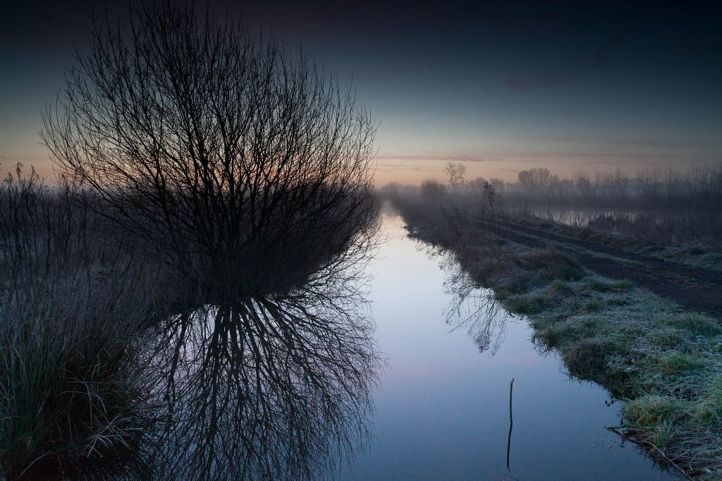 Pre-dawn at Greylake
