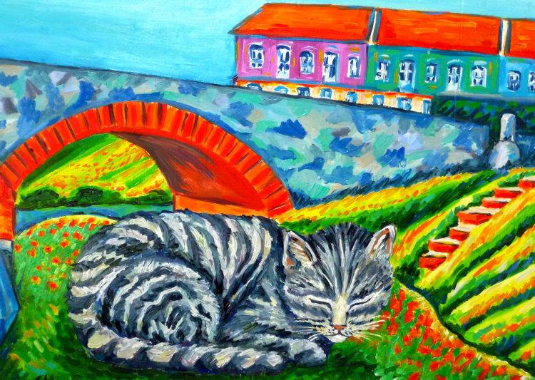 Cat in Lisbon