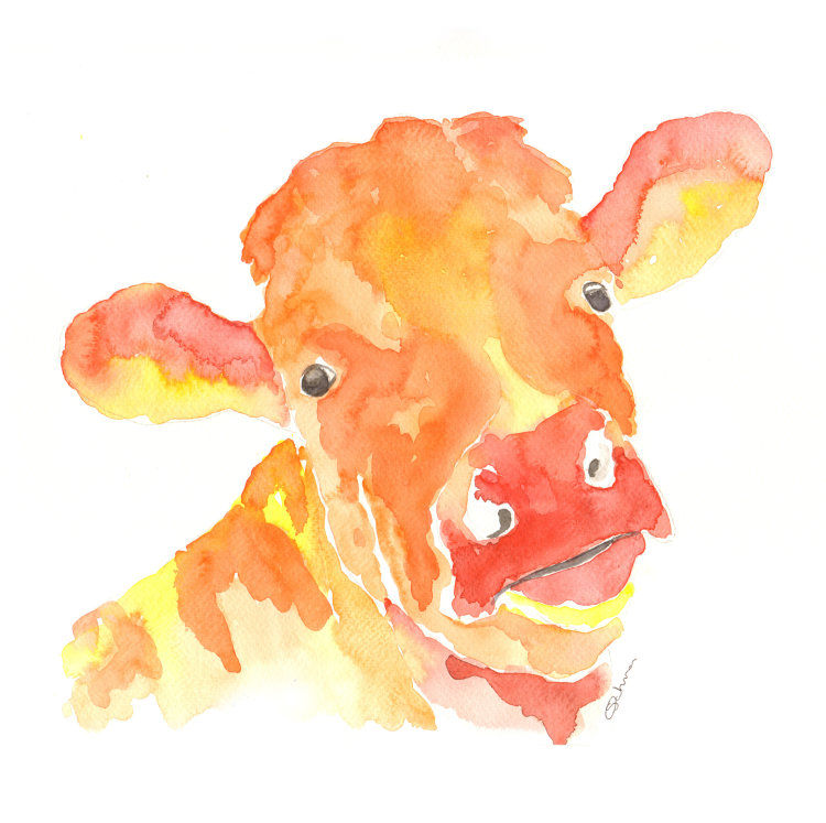 Guernsey Cow Print
