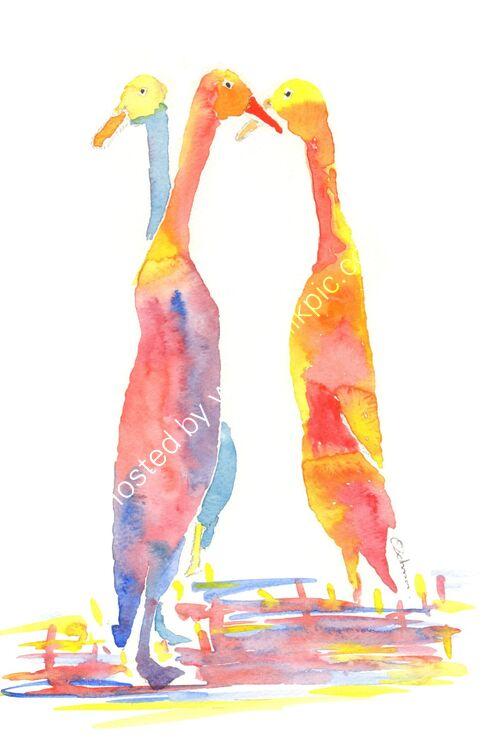 watercolour runner ducks
