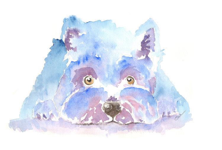 watercolour West Highland Terrier