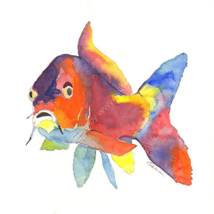 watercolour Coi Carp