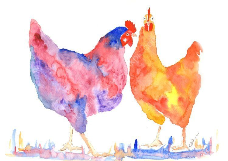 watercolour Two Chickens
