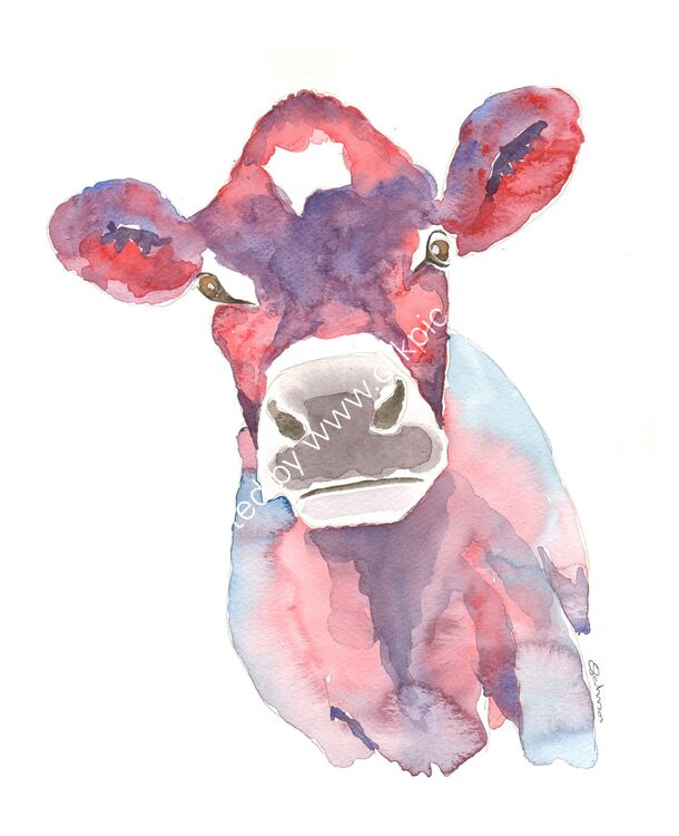 watercolour Jersey Cow