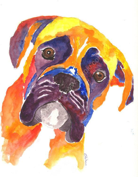 watercolour Boxer Dog