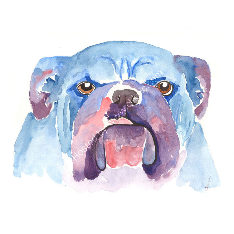 watercolour British Bull Dog