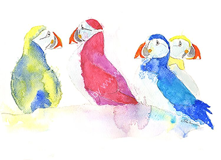 watercolour puffins