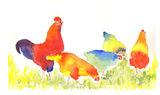 colourful garden chicken print