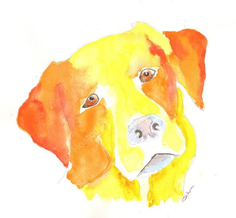 watercolour Golden Labrador